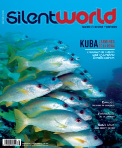 sw_30_Cover