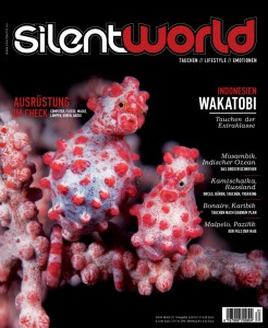 sw_31_cover-1